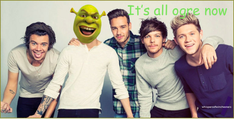 One Extinction: Life After One Direction
