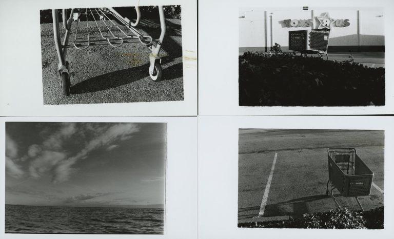 Untitled Polaroids